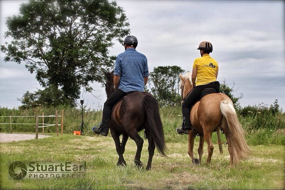 The British Icelandic Horse Championships and Festival 2014 (2/6)