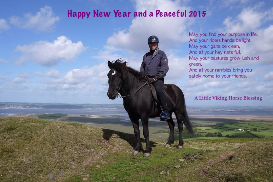 Happy New Year Horse Images 76
